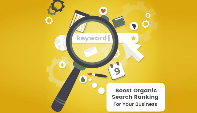 Organic Search Ranking For Your Business In Cooper City Florida