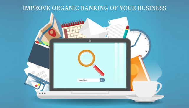Improve Organic Ranking For Your Business in Plantation Florida