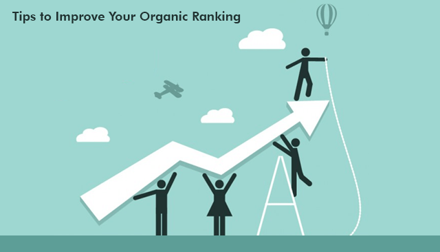 Simple Tips to Improve Your Organic Ranking